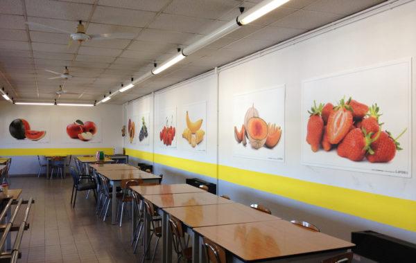 Fotoquadri per mensa aziendale